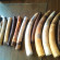 Woman held with 14 elephant tusks