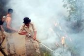 Major fire averted in Wokha and Dimapur