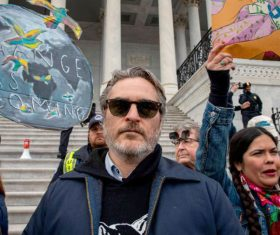 Joaquin Phoenix arrested at climate change protest