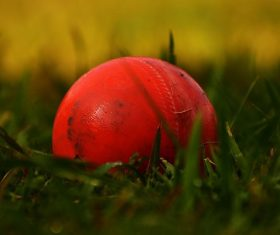 'Can pull off IPL even if first game is played by 1st week of May'