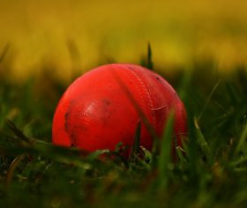 Nagaland win Women's Senior and U-19 One Day Trophy