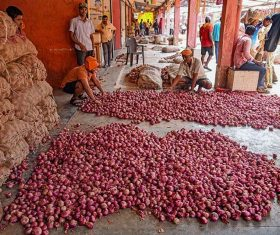 Onion prices hit new high amid disrupted arrivals
