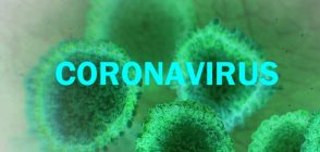 Coronavirus: Nagaland prepares to deal with any eventuality