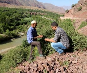 Conserving Traditional Crop Diversity and Wild Medicinal Plants in Morocco